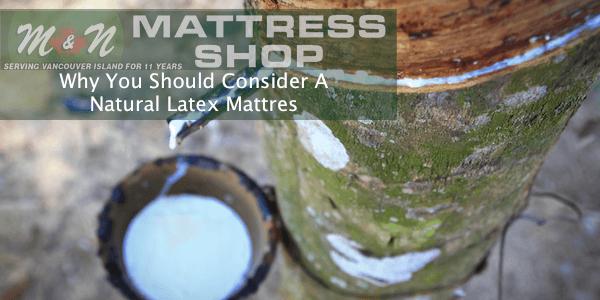 why-consider-a-natural-latex-mattress