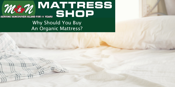 why-should-you-buy-an-organic-mattress